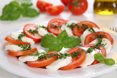 Caprese沙拉用蕃茄和无盐干酪乳酪在板材 免版税库存照片