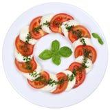 Caprese沙拉用蕃茄和无盐干酪乳酪从上面 免版税库存照片