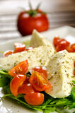 Caprese沙拉,传统意大利开胃菜 免版税图库摄影