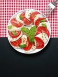 caprese ιταλική σαλάτα Στοκ Εικόνες