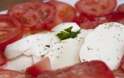 Caprese: σαλάτα μοτσαρελών και ντοματών Στοκ φωτογραφία με δικαίωμα ελεύθερης χρήσης