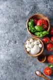 caprese салат ингридиентов Стоковые Изображения RF