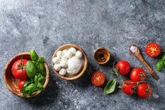 caprese салат ингридиентов Стоковое Изображение
