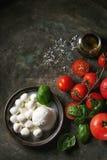 caprese салат ингридиентов Стоковые Фото