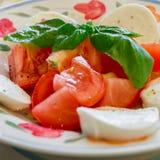 caprese салат крупного плана Стоковые Изображения RF