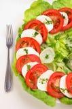 caprese салат Стоковое фото RF