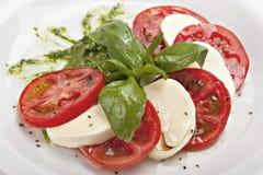 Caprese -意大利沙拉用无盐干酪乳酪 库存照片