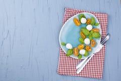 Caprese 经典意大利沙拉用西红柿和无盐干酪 素食主义者 蓝色背景和自由空间文本的 红色 库存图片