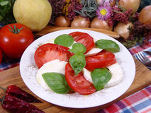 Caprese. Mozzarella & tomatoes Royalty Free Stock Images