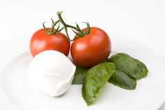 Caprese. Tomatoe, basil and mozarella cheese Stock Images