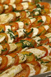 Caprese. Tomatoes and mozzarella Royalty Free Stock Image