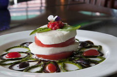 Caprese Appetizer Royalty Free Stock Image