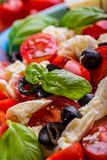 Caprese caprese σαλάτα ιταλική σαλάτα Μεσογειακή σαλάτα carpaccio κουζίνας άριστη πολυτέλεια τρόπου ζωής τροφίμων ιταλική Μεσογει Στοκ εικόνα με δικαίωμα ελεύθερης χρήσης