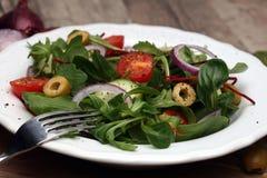 Caprese caprese салат итальянский салат Среднеземноморской салат Стоковое Изображение