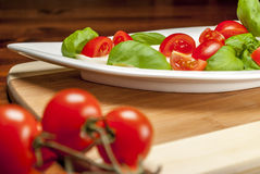 Caprese Royalty Free Stock Photos
