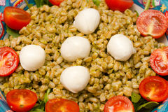 Caprese with farro. Royalty Free Stock Photo