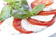 caprese insalata arkivbild