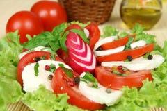 Caprese Italian salad Stock Images