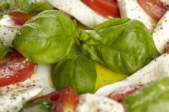 Caprese - mozzarella, pomodori e basilico Fotografie Stock Libere da Diritti