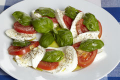 Caprese - mozzarella, pomodori e basilico Fotografia Stock