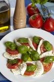 Caprese - mozzarella, pomodori e basilico Immagini Stock Libere da Diritti