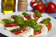 Caprese - Mozzarella, tomater och basilika Royaltyfria Foton