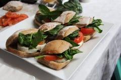 Caprese panini Stock Photos