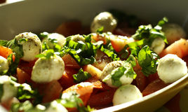 Caprese salad. A bowl of salad Caprese Stock Image