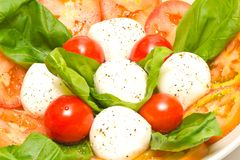 Caprese salad Royalty Free Stock Photos