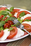 Caprese Salad. A macro shot of a fresh caprese salad Stock Photos