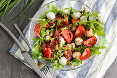 Caprese salad with arugula Royalty Free Stock Photography