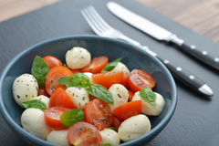 Caprese Salad in bowl Royalty Free Stock Photos