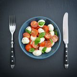Caprese Salad in bowl Stock Images