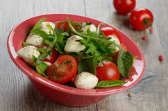 Caprese Salad and bread Stock Photos