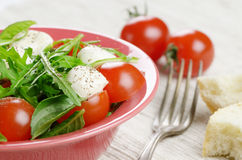 Caprese Salad and bread Royalty Free Stock Photography