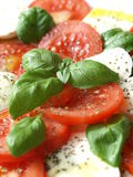Caprese salad - closeup. Close-up of caprese salad - mozzarella with tomatoes, basil and olive stock image