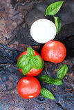 Caprese Salad Ingredients Royalty Free Stock Photos