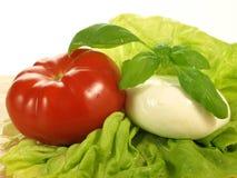 Caprese salad, ingredients Royalty Free Stock Photo