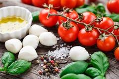 Caprese salad ingredients Stock Photos