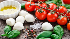 Caprese salad ingredients Stock Image