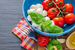 Caprese salad ingredients on dark stone background Stock Image