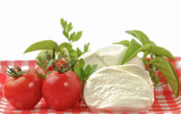 Caprese salad ingredients on white background Stock Image