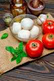Caprese salad ingridients - Mozzarella and tomato. Caprese salad ingridients - Mozzarella cheese and tomato stock photography
