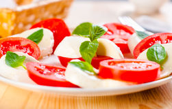 Caprese salad with mozarella cheese, tomatoes Royalty Free Stock Images