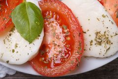 Caprese salad with mozzarella, basil and tomatoes. macro Royalty Free Stock Photos