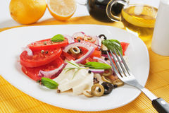 Caprese salad with mozzarella, tomato and basil Royalty Free Stock Photo