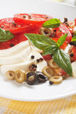 Caprese salad with mozzarella, tomato and basil Royalty Free Stock Photography