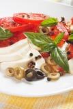 Caprese salad with mozzarella, tomato and basil Royalty Free Stock Photography