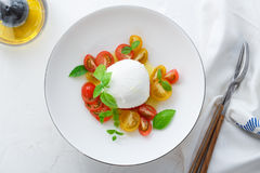 Caprese salad with red and yellow tomatoes, mozarella, basil and olive oil. Close view. White background top view Royalty Free Stock Image