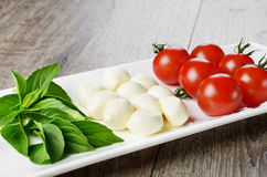 Caprese salad in shape of Italian flag Stock Photography